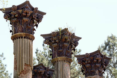 Photograph - Corinthian Column Capitals At Windsor Ruins by Susan Rissi Tregoning