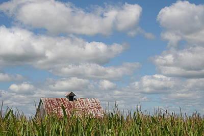 Photograph - Corn Crib Top by Dylan Punke