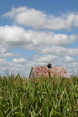 Photograph - Corn Crib Top V by Dylan Punke