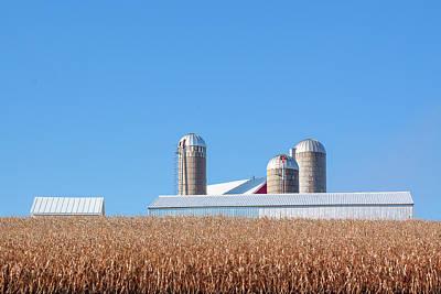 Photograph - Corn Rise No. 2 by Todd Klassy
