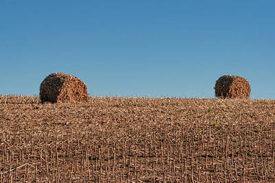 Photograph - Corn Stalk Bales by Todd Klassy