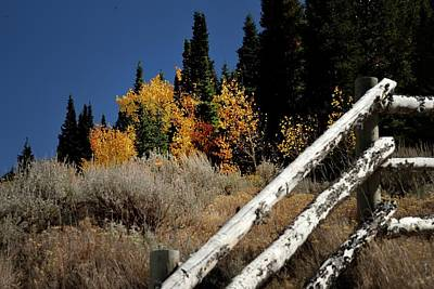 Photograph - Corner Post Fall Color by Jerry Sodorff