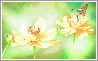Photograph - Cosmos Flowers, Bud, Butterfly, Digital Painting by A Gurmankin