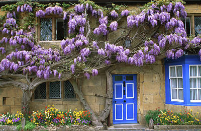 Photograph - Cottage With Wisteria In Flower by Barbara Van Zanten
