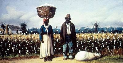 Photograph - Cotton Pickers by Mpi