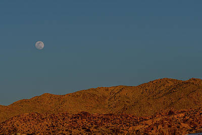 Photograph - Cottonwood Campground Moonrise by Matthew Irvin