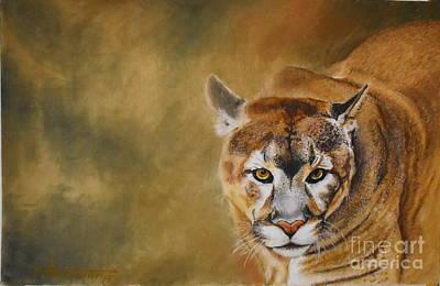 Cougar Eyes Original
