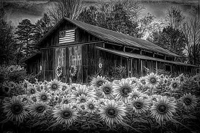 Photograph - Country Barn In Sunflowers Radiant Black And White by Debra and Dave Vanderlaan