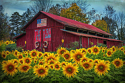 Photograph - Country Barn In Sunflowers Textured by Debra and Dave Vanderlaan