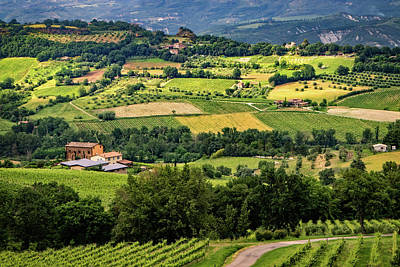 Photograph - Country Fields In Italy by Carolyn Derstine