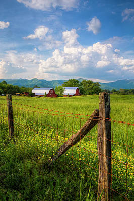 Photograph - Country Life by Debra and Dave Vanderlaan