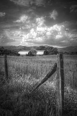 Photograph - Country Life In Black And White  by Debra and Dave Vanderlaan