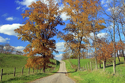 Photograph - Country Road Through Fall Trees by Angela Murdock