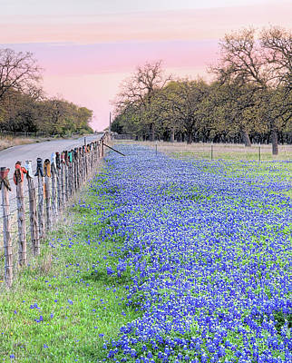 Photograph - Cowboy Boots And Bluebonnets In Willow City by JC Findley