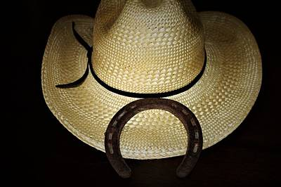 Photograph - Cowboy Hat And Horseshoe by Sheila Brown