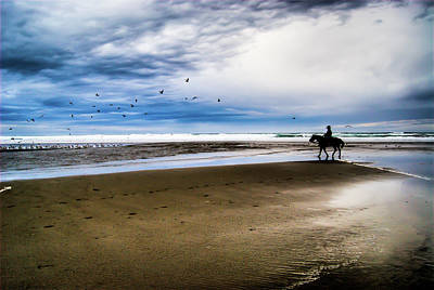 Bird Photograph - Cowboy Riding Horse On Beach by D. R. Busch