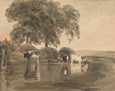 Drawing - Cows In A Pool by Peter De Wint
