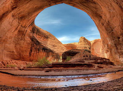 Photograph - Coyote Gulch Alcove by Leland D Howard