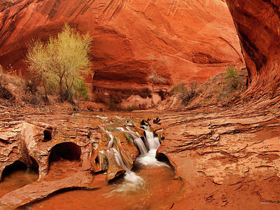 Coyote Gulch Texture Art Print by Leland D Howard