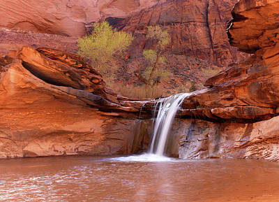 Photograph - Coyote Gulch Waterfall by Leland D Howard