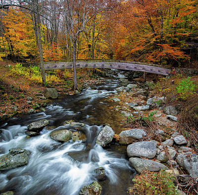 Photograph - Crab Tree Creek by Mark Papke