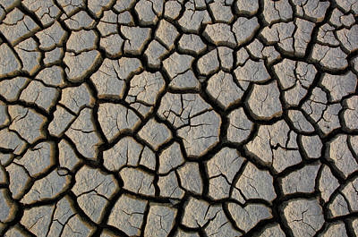 Photograph - Cracked Mud On The Salt Flats Of The by Pete Oxford/ Minden Pictures
