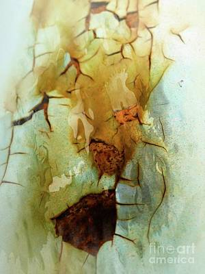 Photograph - Cracks On The Surface by Marcia Lee Jones