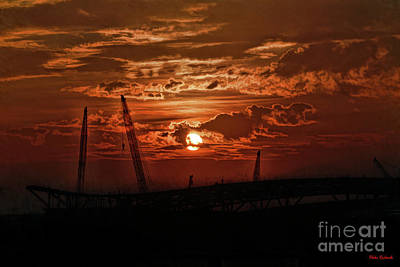Photograph - Cranes In The Sunset by Blake Richards