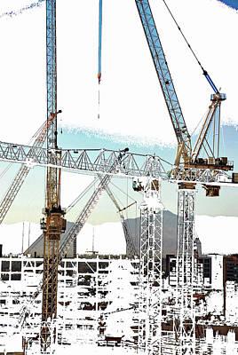 Photograph - Cranes by John Schneider