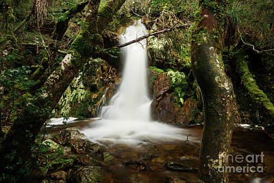 Photograph - Crater Falls In Cradle Mountain by Rob D