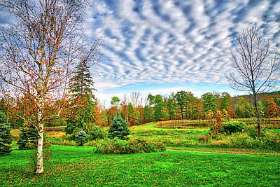 Photograph - Crazy Clouds In The Finger Lakes by Lynn Bauer