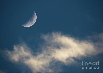 Photograph - Crescent Moon At Sunset by Kevin McCarthy