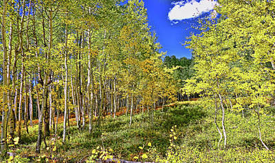 Photograph - Crested Butte # 2 by Allen Beatty