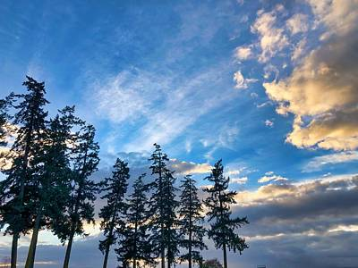 Photograph - Crisp Skies by Brian Eberly