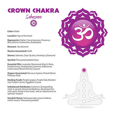 Digital Art - Crown Chakra Chart by Serena King