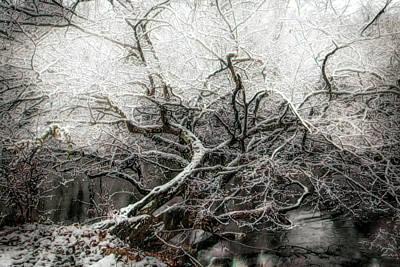 Photograph - Crown Of Ice by Debra and Dave Vanderlaan
