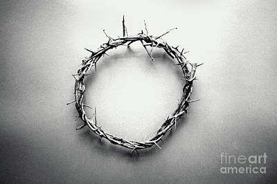 Photograph - Crown Of Thorns In Black And White  by Stephanie Frey