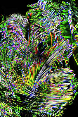 Digital Art - Crystal Forest 2 by Lisa Yount