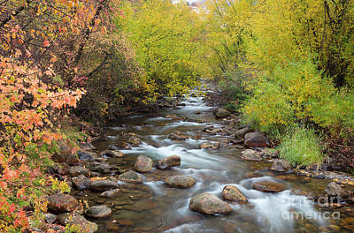 Photograph - Cub River Autumn by Idaho Scenic Images Linda Lantzy
