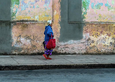 Photograph - Cuban Pallette by Tom Singleton