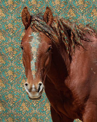 Photograph - Curly by Mary Hone