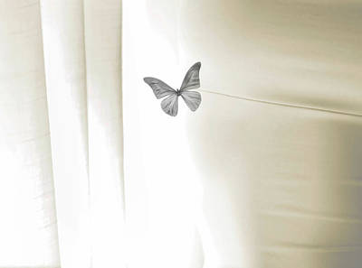 Torso Wall Art - Photograph - Curtain, Womans Torso, And A Butterfly by Claire Morgan