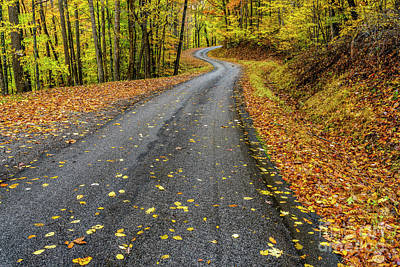 Photograph - Curvy Country Road In Autumn by Thomas R Fletcher