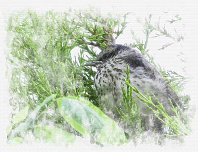 Digital Art - Cute Little Bird On Tree by Eduardo Jose Accorinti