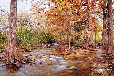 Photograph - Cypress Creek As It Exits Blue Hole Regional Park In Wimberley, Hays County Texas Hill Country by Silvio Ligutti