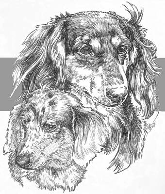 Drawing - Dachshund - Long-hair And Pup by Barbara Keith