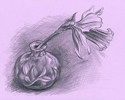 Drawing - Daffodil In A Ceramic Vase by MM Anderson