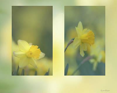 Photograph - Daffodils by Karen Rispin