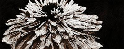 Photograph - Dahlia En Noir by Alice Gipson