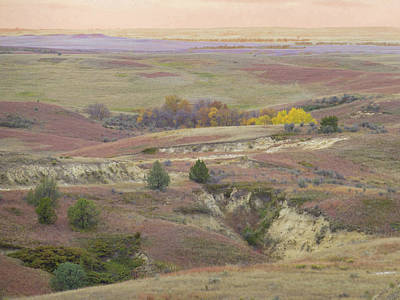Photograph - Dakota Grassland Fantasy by Cris Fulton